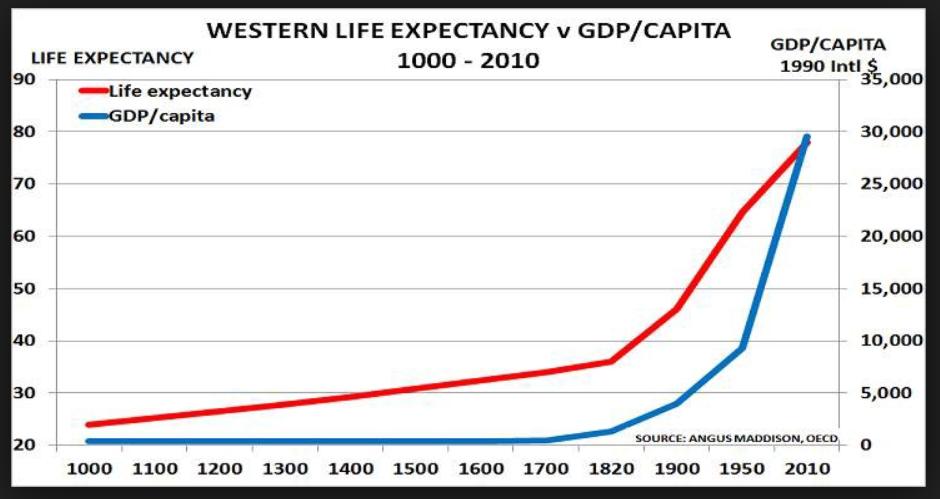 Source Angus Maddison, OECD